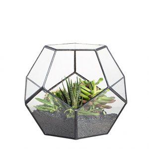 Terranium container