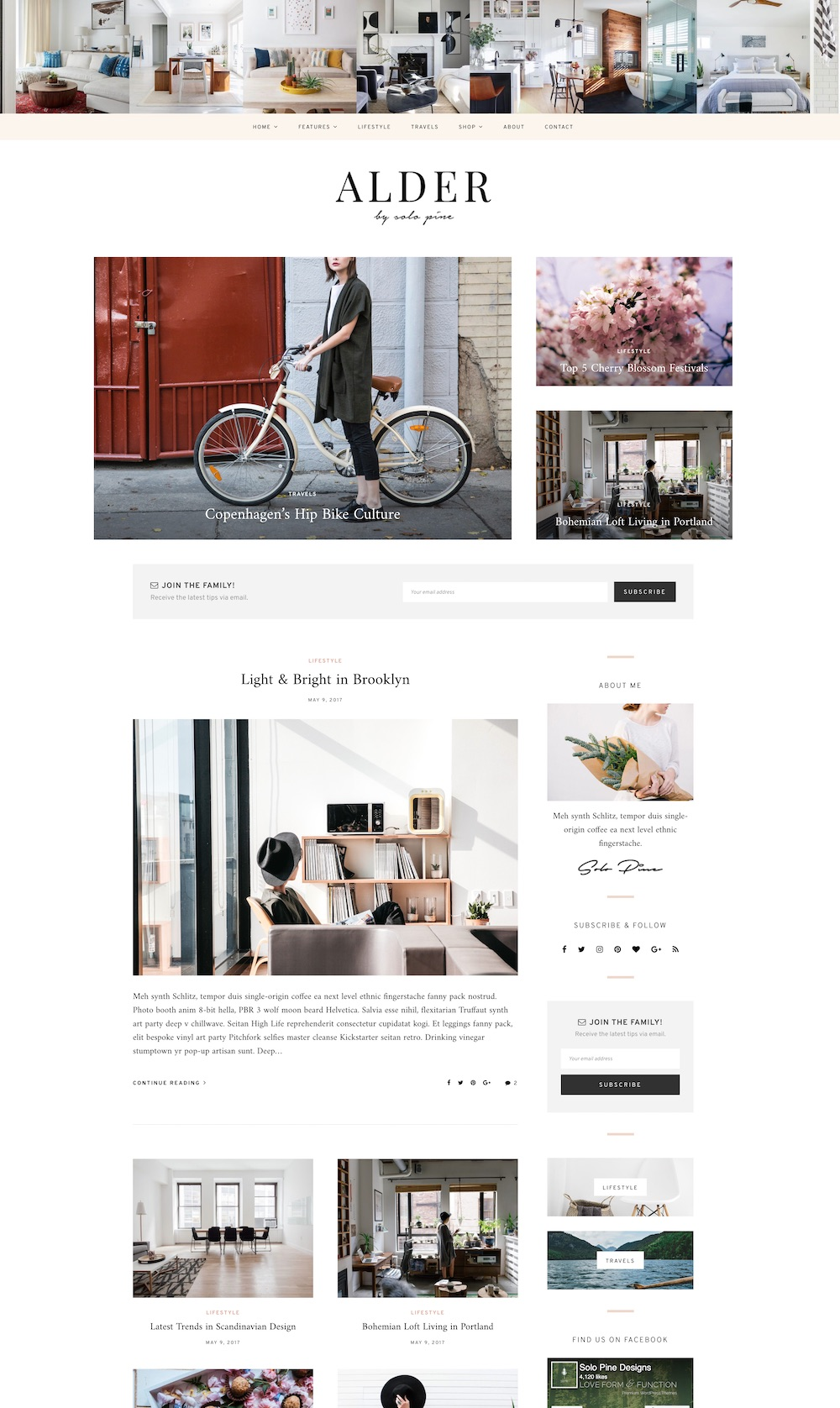 Alder WordPress theme | The best WordPress themes for bloggers